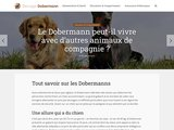 Elevage-dobermann.fr