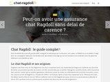 Chat-ragdoll.fr