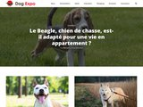 Dogexpo.info